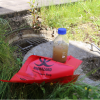 image for CORONAFATE, Studying the behaviour of Sars-Cov-2 in Luxembourg's wastewater