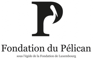 image for Three doctoral students receive Pélican Award 2013