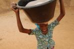image for Irrigation, reforestation et agriculture durable au Mali